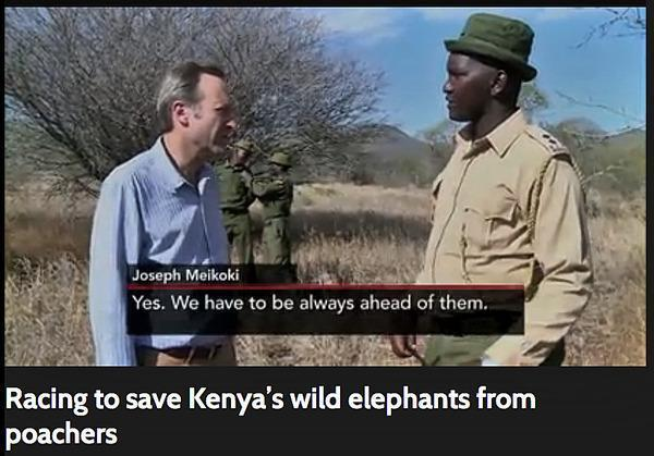 140828 1 1 Big Life Foundation On Pbs Newshour Racing to Save Kenyas Wild Elephants from Poachers