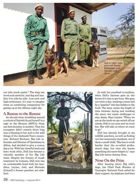 American Kennel Club Magazine Feature Article On Big Life's Tracker Dogs