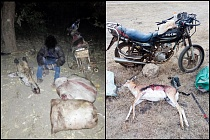 201027 multiple poachers caught in big lifes area of operation